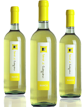 Offerta estate 3btl BIANCO SALENTO